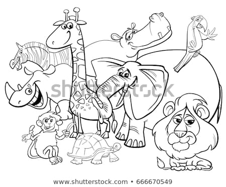 safari animal characters group coloring book Stock photo © izakowski