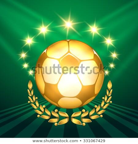 Campeão copo reflexão verde futebol fundo Foto stock © smuki