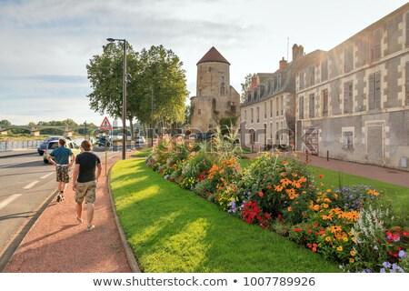 Goguin tower, Nevers, France Stock photo © borisb17