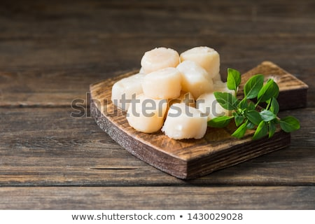 Coquilles St. Jacques Stock photo © fotogal