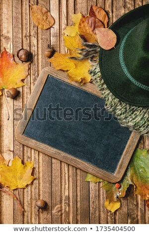 green felty chestnut Stock photo © gewoldi