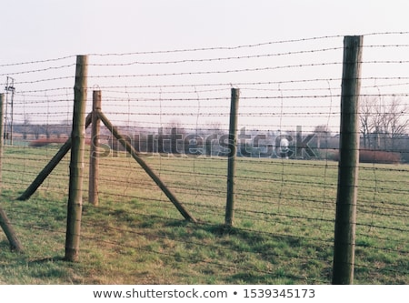 Concentration camp Pologne monde guerre noir Photo stock © photocreo