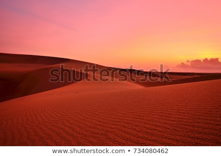 red sand Stock photo © prill