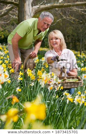 Senior pointing out something to gardener Stock photo © photography33