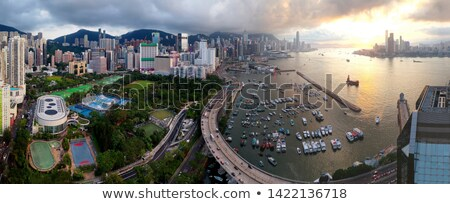 puesta · de · sol · costa · Hong · Kong · China · árbol · paisaje - foto stock © kawing921