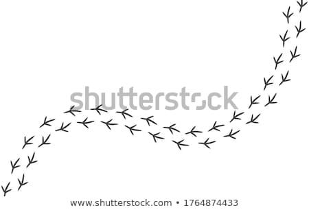vektor · lábnyomok · keret · terv · háttér · űr - stock fotó © freesoulproduction