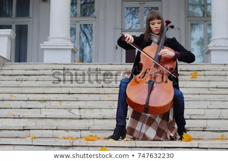 Nő csellista gyönyörű nő cselló hangszer fa Stock fotó © piedmontphoto