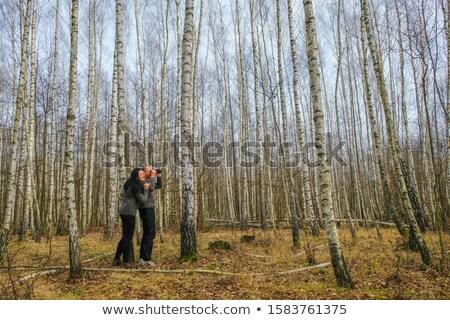 woman in birch forest stock photo © courtyardpix