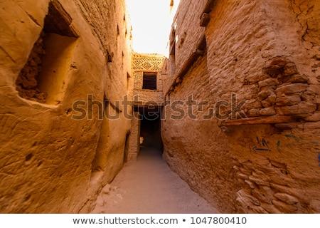 オアシス ウィンドウ 村 エジプト 家 建物 ストックフォト © prill