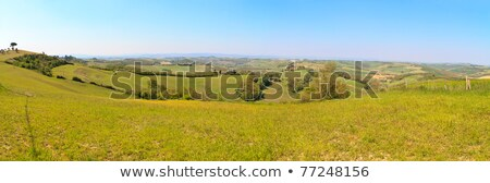 Toskana · manzara · ağaçlar · çiftlikleri - stok fotoğraf © bertl123