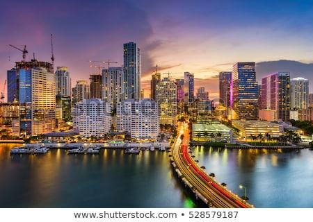Stock fotó: Miami · sziluett · éjszaka · nem · felhők · tökéletes