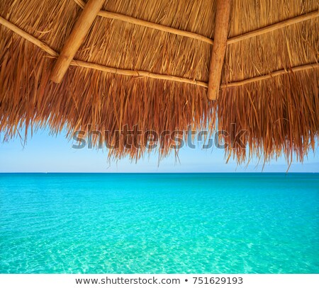 Karaibów · plaży · hamak · palm · niebo · chmury - zdjęcia stock © vwalakte