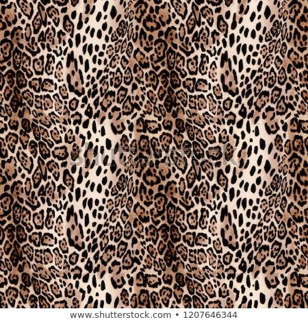 abstract texture of leopard skin Stock photo © tetkoren