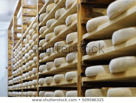 Francés queso ruedas mercado Foto stock © lunamarina