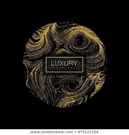 Vip gold globe illustration design Stock photo © alexmillos