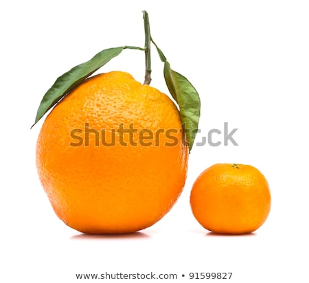 クローズアップ · 全体 · カット · オレンジ · マクロ · ショット - ストックフォト © designsstock
