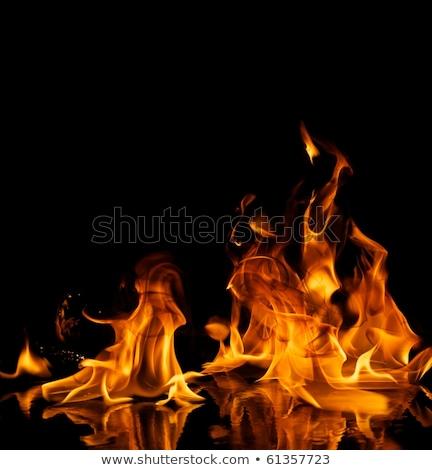 Belo elegante fogo chamas água projeto Foto stock © Nejron