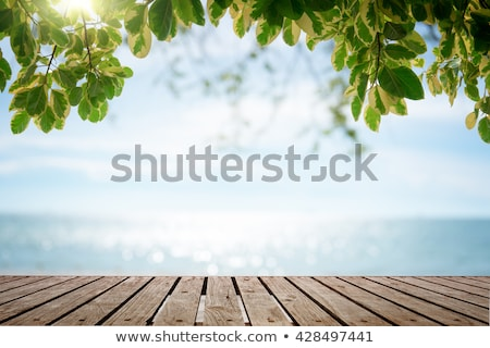 Meer Ansicht Deck Sommer Boot Schiff Stock foto © Nejron