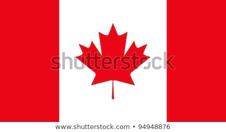 Kanada bayrak yangın bilgisayar grafikleri dizayn imzalamak Stok fotoğraf © RAStudio