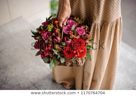güzel · bir · kadın · kırmızı · lekeli · elbise · sepet - stok fotoğraf © feedough