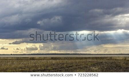 Sessiz çiftlik eski ahır güneş ışığı akşam Stok fotoğraf © Backyard-Photography