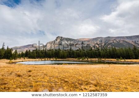 Alpine vijver vallen dag berg Stockfoto © wildnerdpix