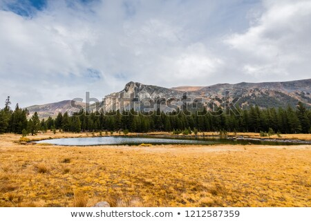 Alpine étang automne jour montagne Photo stock © wildnerdpix