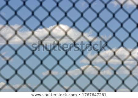 Stockfoto: Hek · hemel · natuurlijke · houten · blauwe · hemel