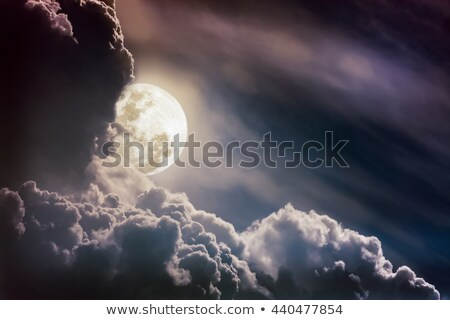 Moonlit sky landscape Stock photo © kjpargeter