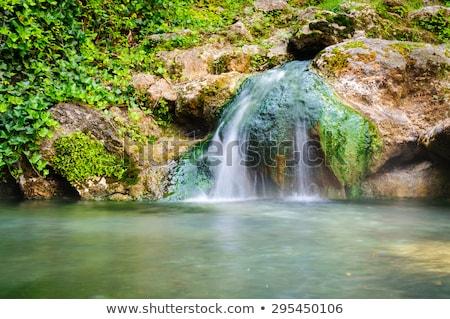 tájkép · dombok · folyó · vektor · terv · illusztráció - stock fotó © bluering