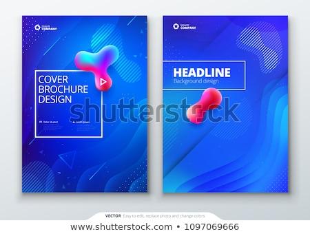 éves jelentés brosúra szórólap terv kék Stock fotó © SArts