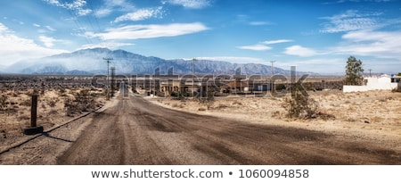 Desert scene with shops and cactus Stock photo © bluering