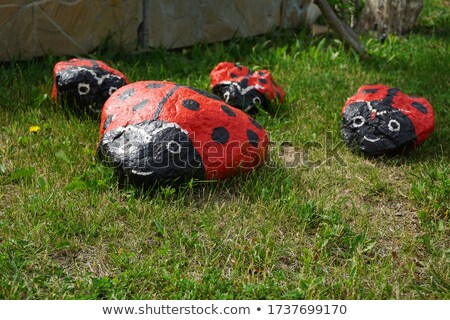 beetle stone difference  Stock photo © Olena