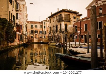 Beautiful calm sunset in Venice Stock photo © Givaga