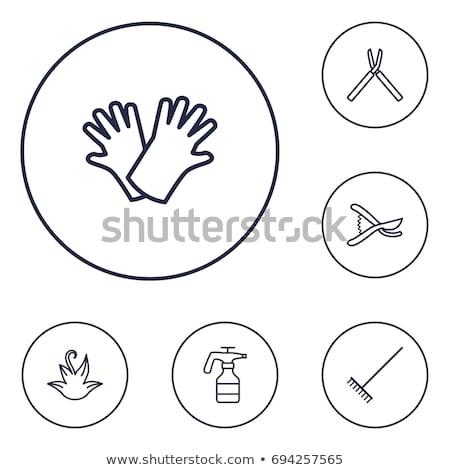 Garden shears and Gloves Stock photo © StephanieFrey