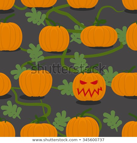 Scary halloween pumpkin among plantation of pumpkins. Pumpkin fa Stock photo © popaukropa