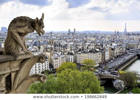 Taş Eyfel Kulesi gün batımı Paris Fransa şehir Stok fotoğraf © Givaga