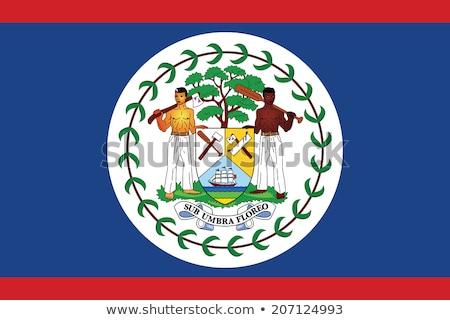 Belize zászló fehér festék felirat utazás Stock fotó © butenkow