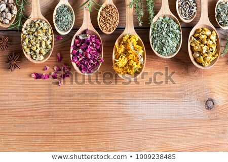 Nasturtium (Tropaeolum majus) seeds on a wooden spoon Stock photo © madeleine_steinbach