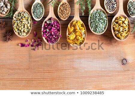 semences · bois · nature · semences · régime · alimentaire - photo stock © madeleine_steinbach