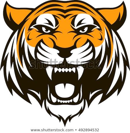 Stock photo: Bengal Tiger Head Mascot