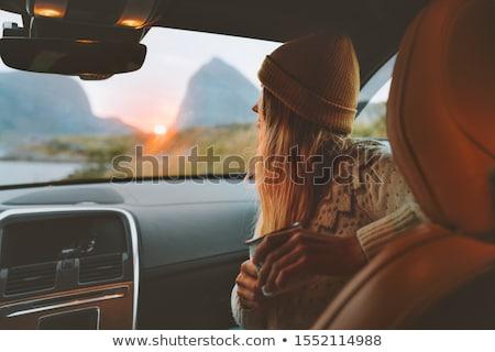 ノルウェー 道路 旅行 運転 道路 美しい ストックフォト © Anna_Om