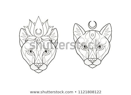 Stok fotoğraf: Ayarlamak · kadın · aslan · karakter · örnek · dizayn