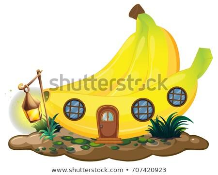 Banane maison lanterne illustration lumière maison Photo stock © colematt