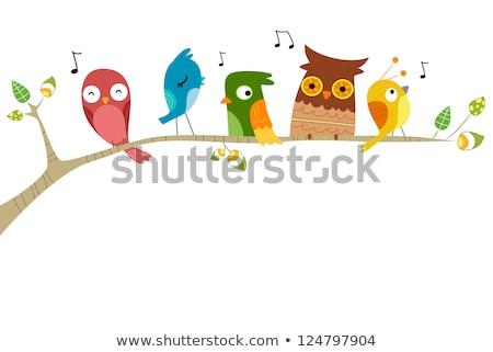 cartão · cantando · pássaro · vetor · flor · primavera - foto stock © artspace
