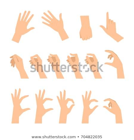 Palm hand grafisch ontwerp sjabloon vector geïsoleerd Stockfoto © haris99