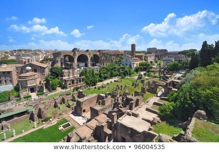 view of Palatine, Rome Stock photo © borisb17