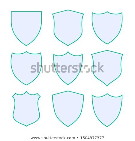 Dziewięć ochrony tarcza ikona zielone granicy Zdjęcia stock © SArts