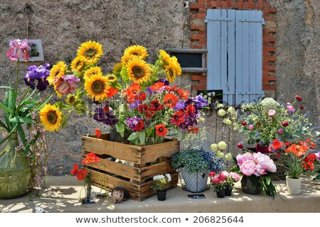 sunflower bouquets on sale on the street Stock photo © nito
