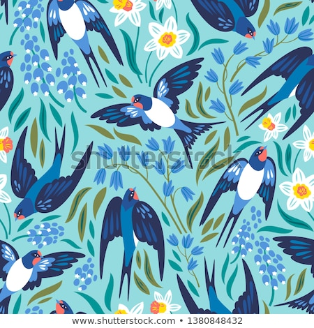 Swallows background Stock photo © lirch